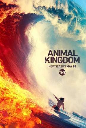 Animal Kingdom - 4ª Temporada Legendada Série Torrent Download