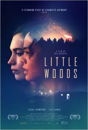 Little Woods - Legendado Filme Torrent Download
