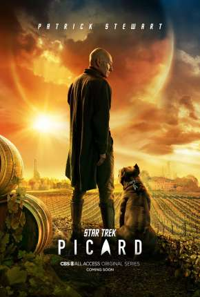 Star Trek - Picard - 1ª Temporada Série Torrent Download