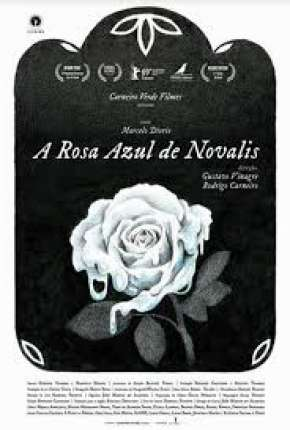 A Rosa Azul de Novalis Filme Torrent Download