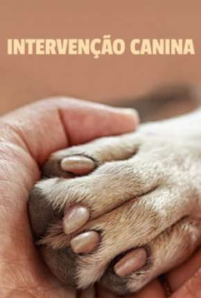 Intervenção Canina - 1ª Temporada Completa Série Torrent Download